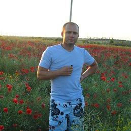 Дима, 36 лет, Любашевка