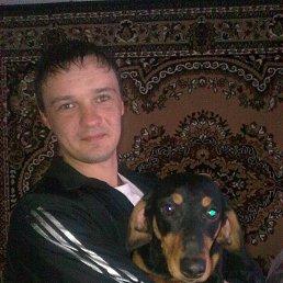 Костя, 35 лет, Веселое