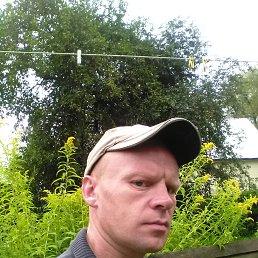 Евгений, 41 год, Пошехонье