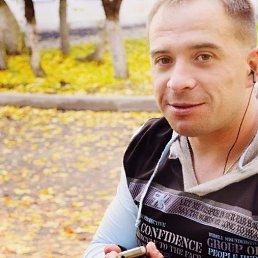 Денис, 34 года, Кольчугино