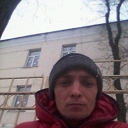 денис, 37 лет, Покровское