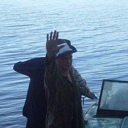 Андрей, 35 лет, Рыбинск
