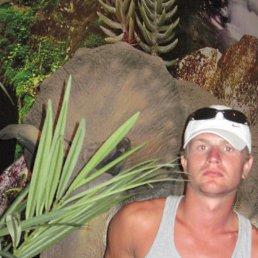 Дмитрий, 29 лет, Кагарлык