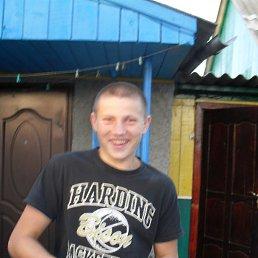 Андрей, 22 года, Коростень