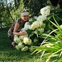 Фото Svetlana, Рязань, 46 лет - добавлено 26 июля 2012 в альбом «Мои фотографии»