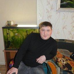 Василий, 40 лет, Артем