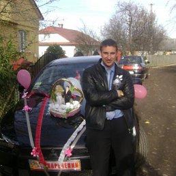 Володимир, 33 года, Рожнятов