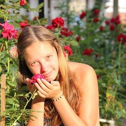 Лера, 24 года, Московский