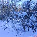 Фото **Nежnый Яд**, Петрозаводск, 49 лет - добавлено 9 декабря 2011