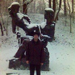 Николай, 50 лет, Лохвица
