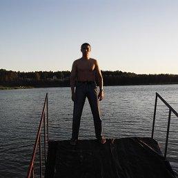 Umari, 29 лет, Лосино-Петровский