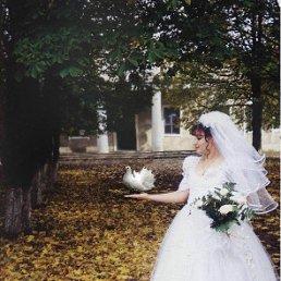 Маша, 36 лет, Новогродовка