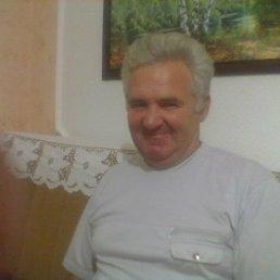 Дмитрий, 61 год, Малин