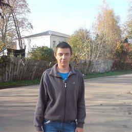 серега, 29 лет, Нежин