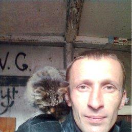 Витамин, 40 лет, Барвенково