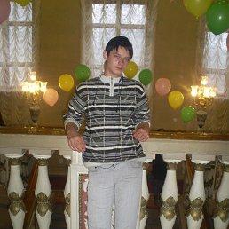 Артур, 24 года, Горловка