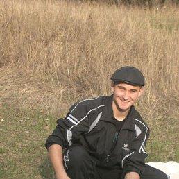 Сергей, 30 лет, Лисичанск