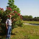 Фото Vasil, Бургас, 62 года - добавлено 20 мая 2012