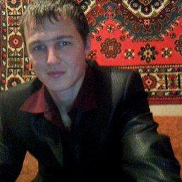 Дмитрий, 30 лет, Ириклинский