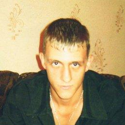 Сергей, 29 лет, Пугачев