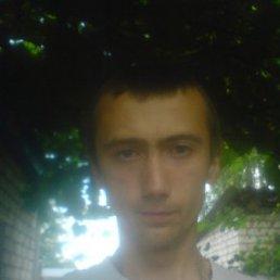 Алексей, 28 лет, Климово