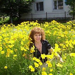Валентина, 53 года, Славута