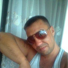 Серёга, 48 лет, Клин