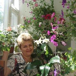 Ольга, 59 лет, Сквира