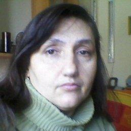 Татьяна, 51 год, Берегово