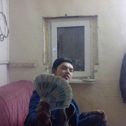 Стас, 28 лет, Артемовский