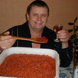 АЛЕКСАНДР, 56 лет, Старобельск