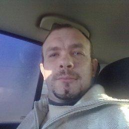 Андрей, 39 лет, Тарасовский