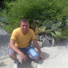 Александр Нежевенко, , Новомиргород