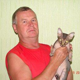 юрий, 62 года, Алатырь