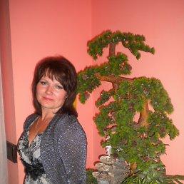 Лена, 42 года, Казатин