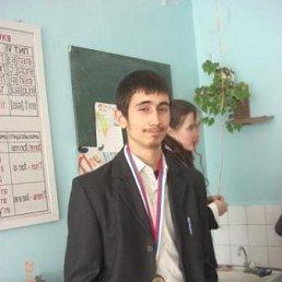 Эмин, 28 лет, Кировск