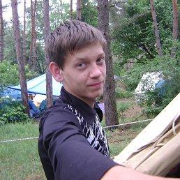 Саша, 25 лет, Володарка
