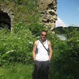 Руслан, 33 года, Гнивань