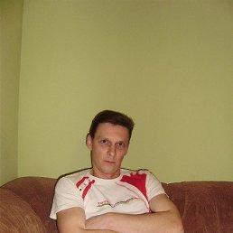 Михаил Пальчук, 44 года, Сокаль