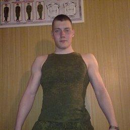 Анатолий, 29 лет, Климовск