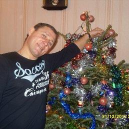 сергей, 43 года, Кадошкино