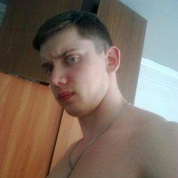 Александр, 28 лет, Мытищи