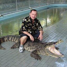 Игорь, 51 год, Бар