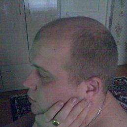 Дмитрий, 36 лет, Тула-50