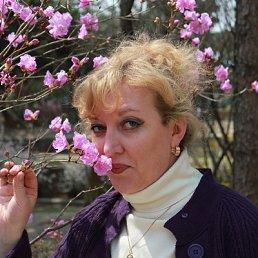 Светлана, 51 год, Бронницы