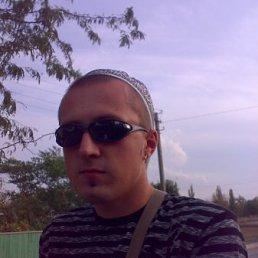 денис, 29 лет, Брянка