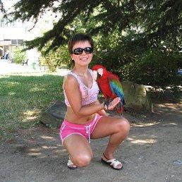 Olya, 40 лет, Киров