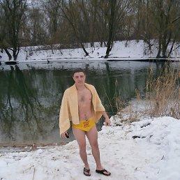 Александр, 29 лет, Двуречная