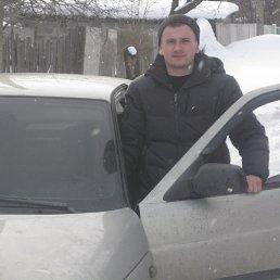 Олег, 33 года, Червонопартизанск