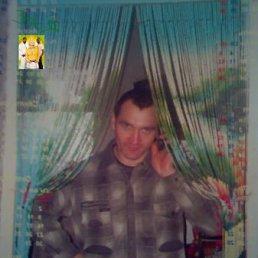 Александр, 44 года, Сазоново